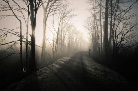 winterscape-20
