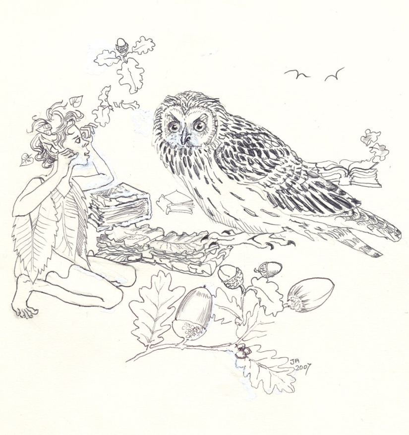 DuoGraph Zen Meditation no. 2 – Owl and the Rabbit